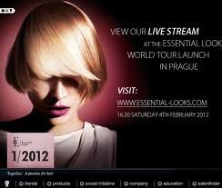 SCHWARZKOPF PROFESSIONAL ESSENTIAL LOOKS WORLD TOUR SHOW
